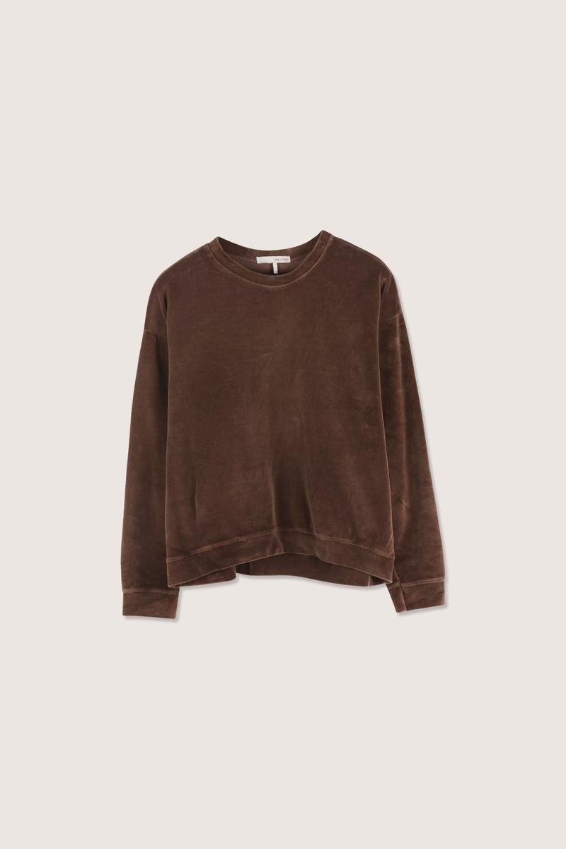 TShirt H436 Brown 5